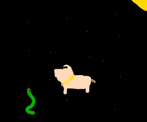 A cool pig and snake in space.