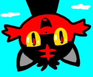 A happy Litten (Pokemon)