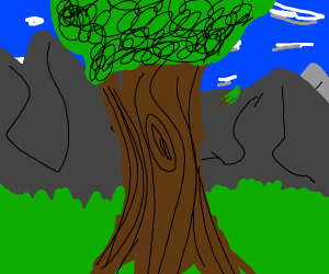 A tree in front of a mountain