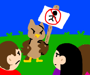 Owl protesting humans