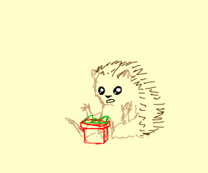 Hedgehog get presents