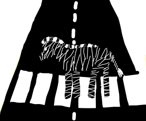 Zebra crossing the street
