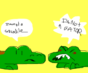 Crocodile and Alligator conversing