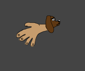 Dog whose body is an entire human hand