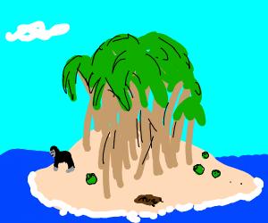 Gorilla on a desert island
