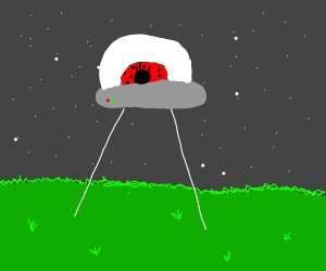 Ladybug from an Alien Planet