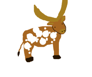 Spotted ankole cow