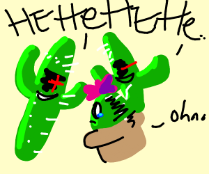 Cactus gets into a fight