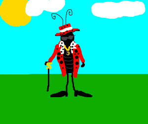 ladybug pimp