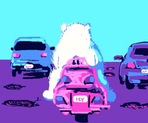Potholes and Polar Bears