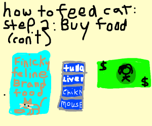 How to feed cat: Step 1: Get a Cat (Cont.)