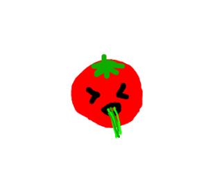 tomato puking