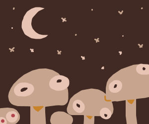 Mushrooms at night.