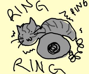 Pet Telephone
