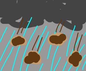 it rains brown lumps