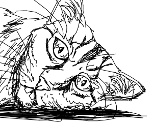 Bucktooth Cat