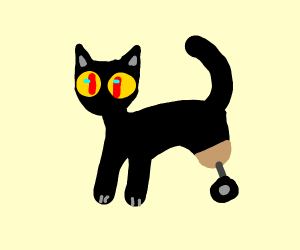 black cat with wheels for feet