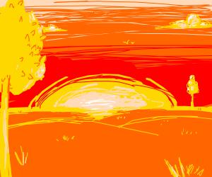 sunny plain