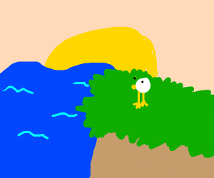 duck sitting on a cliff watching the sunset