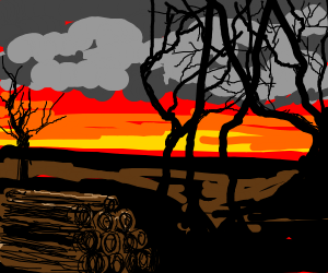 A peaceful sunset. A lonely woodpile.
