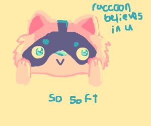 Soft Raccoon