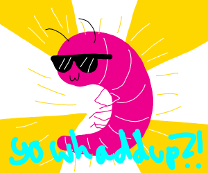 Bold Shrimp