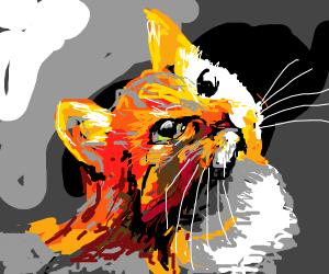 Fiery kitten