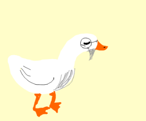 Old Duck