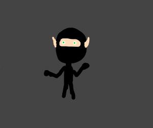 Ninja elf