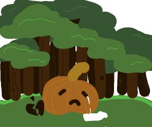 Heartbroken Pumpkin