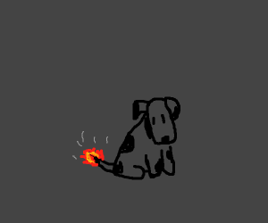 A dog that's on fire