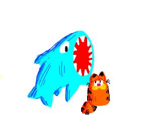 shark consuming orange cat