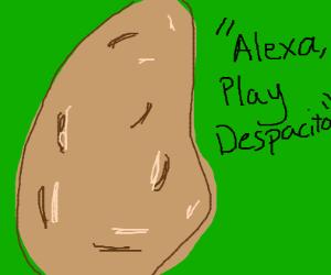 """potato saying """"alexa, play despacito"""""""