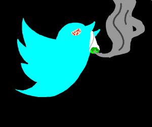 high twitter bird