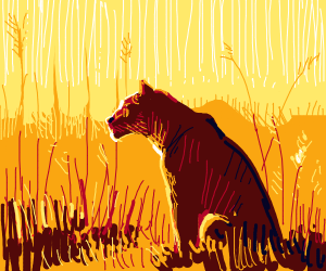 lioness watching a sunset in the savana