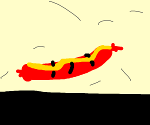 Hot dog with no bun