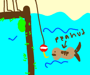 fishing for peanut fish
