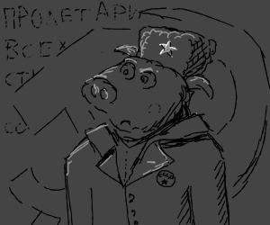 Pig in Soviette Union