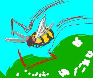 Bumblebee went downhill