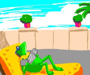 Kermit feels the sunshine