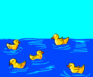 Rubber ducks in a pond