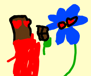 A Chocolate bar and flower have a crush