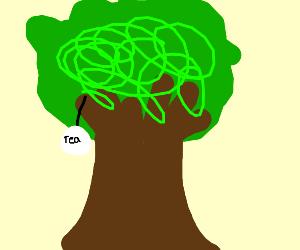 treabags (tea bags in tree )