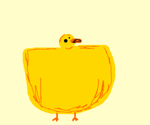 detailed duck