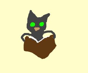 Novel Kitty
