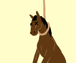 Horse tied to a hanging rope