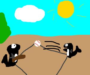 Orca Baseball