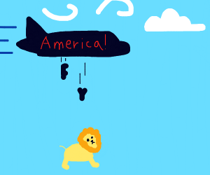 us airlines attacks lion