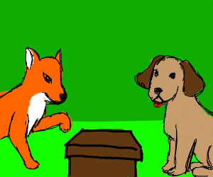 dog and fox find a box