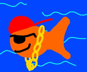 Gangsta fish